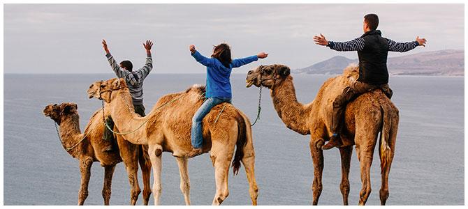 Camel ride at sand dunes - Corralejo