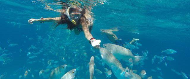 Snorkeling Excursions from Corralejo - Fuerteventura to Lobos. Good places to snorkel